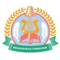 МАОУ Видновская гимназия